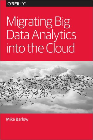 Migrating Big Data Analytics into the Cloud